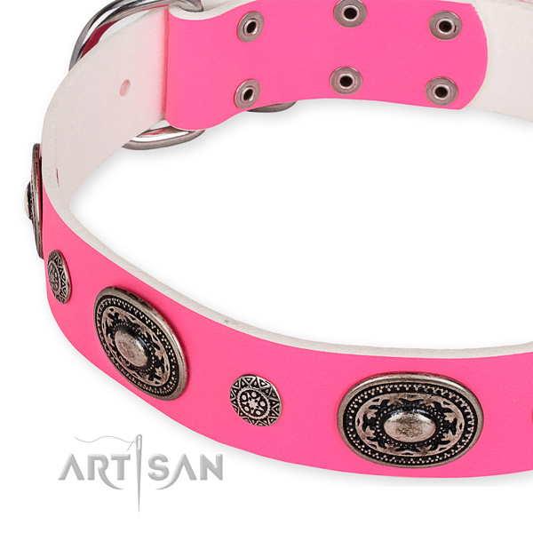 Leather dog collar with stylish reliable embellishments