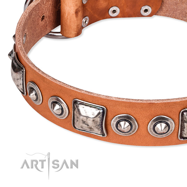 Flexible full grain leather dog collar crafted for your lovely canine