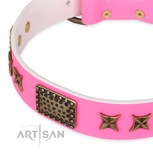 Genuine leather collar with reliable hardware for your stylish canine