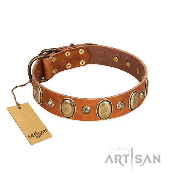 Natural leather dog collar of flexible material with unique embellishments