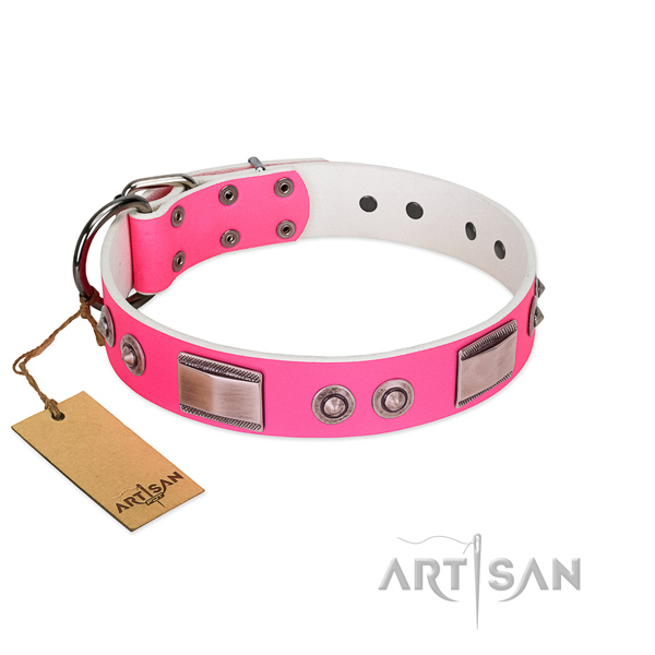 Incredible genuine leather collar with decorations for your dog