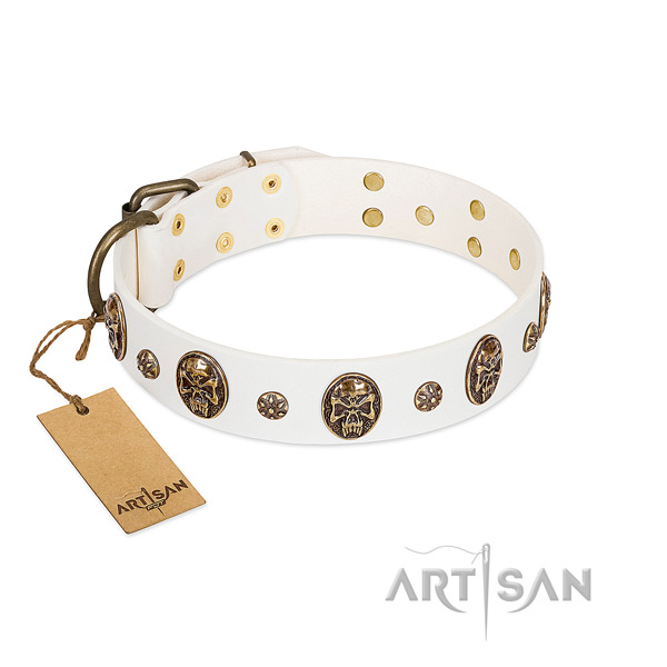 Embellished full grain natural leather collar for your four-legged friend