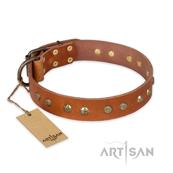 Designer full grain natural leather dog collar with reliable D-ring