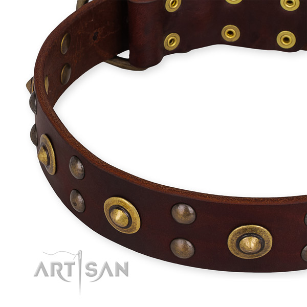 Genuine leather collar with strong buckle for your attractive doggie
