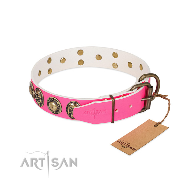 Corrosion resistant adornments on comfortable wearing dog collar