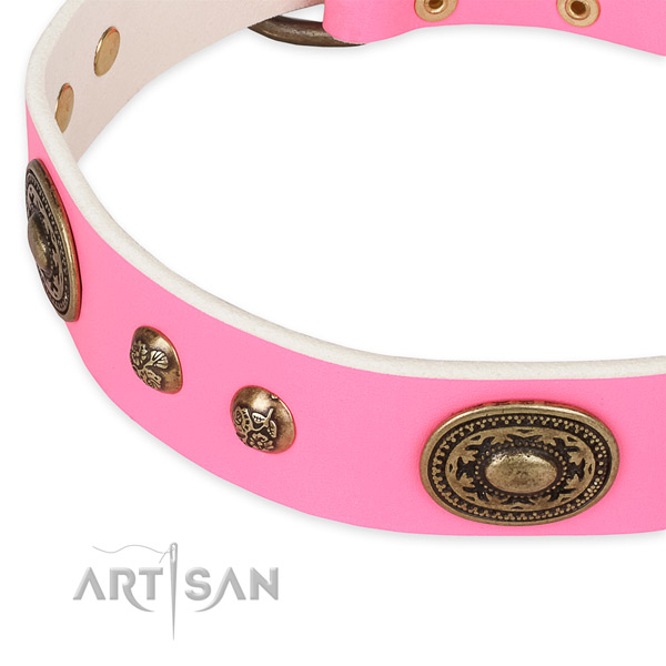 Incredible leather collar for your lovely four-legged friend