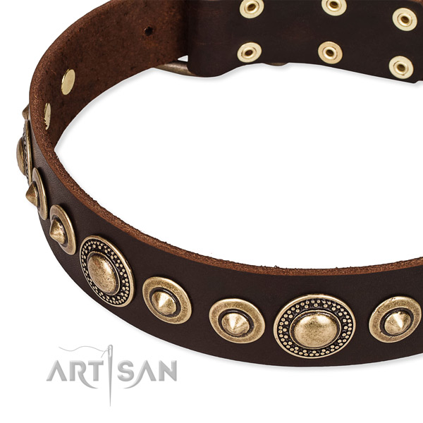 Quality natural genuine leather dog collar handmade for your stylish four-legged friend