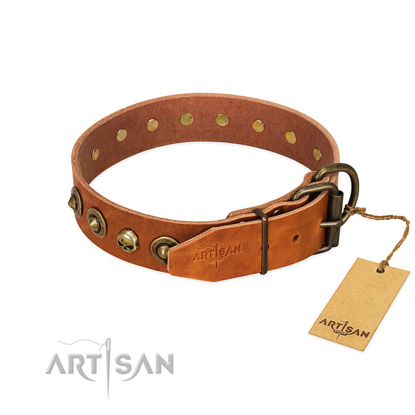 Natural leather collar with extraordinary studs for your doggie