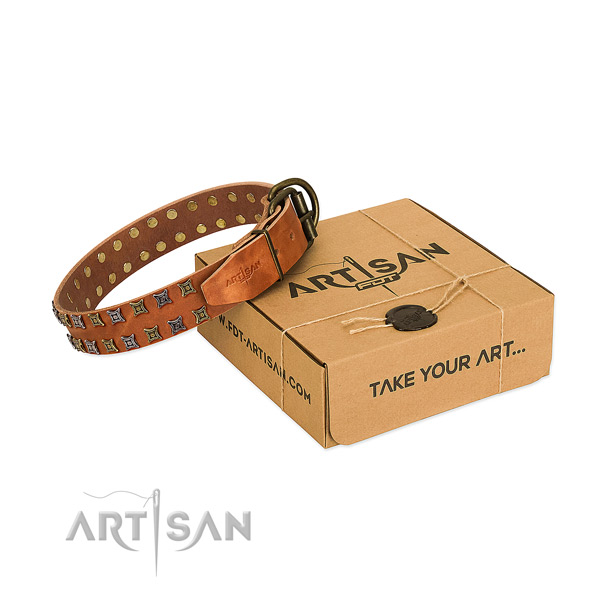 High quality full grain genuine leather dog collar handcrafted for your dog
