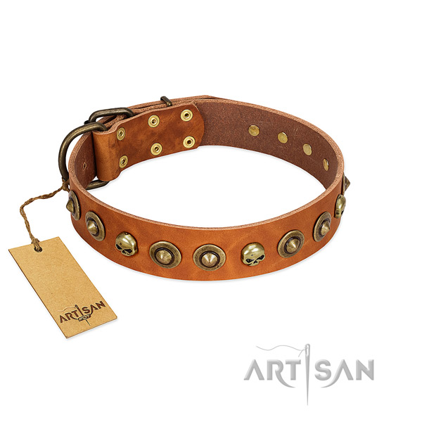 Full grain genuine leather collar with unique studs for your pet