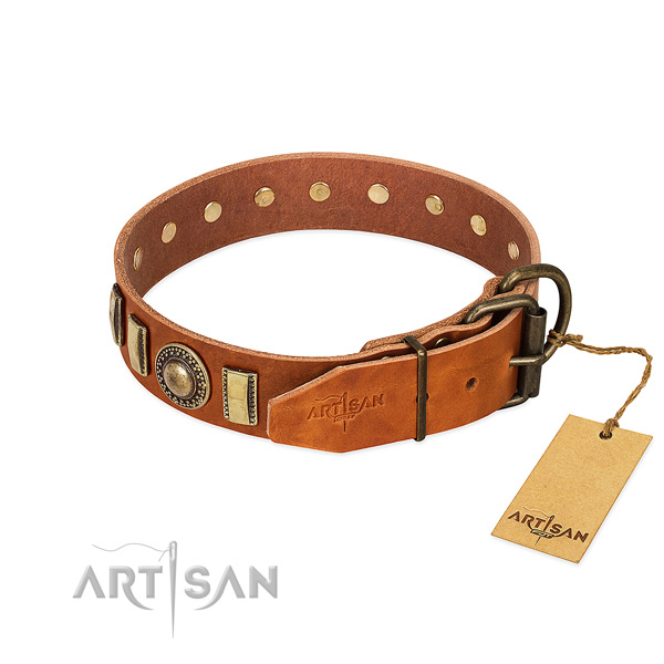 Exceptional genuine leather dog collar with rust-proof D-ring