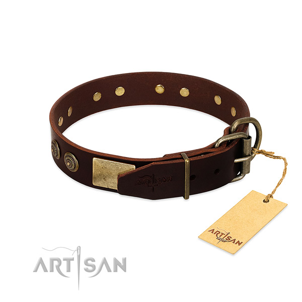 Reliable decorations on full grain leather dog collar for your canine