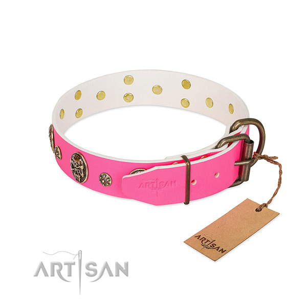 Rust resistant hardware on leather collar for walking your canine