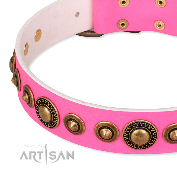 Top notch leather dog collar made for your handsome doggie