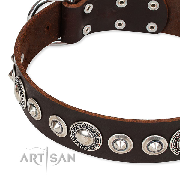 Comfy wearing embellished dog collar of durable full grain leather