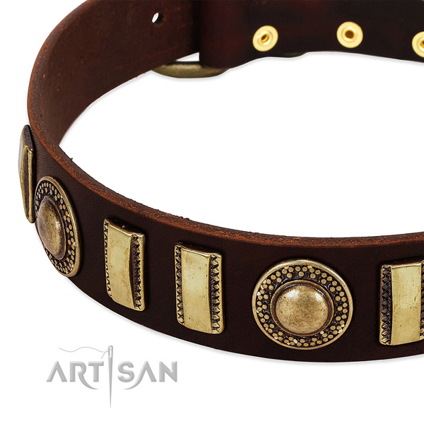 High quality full grain natural leather dog collar with strong fittings