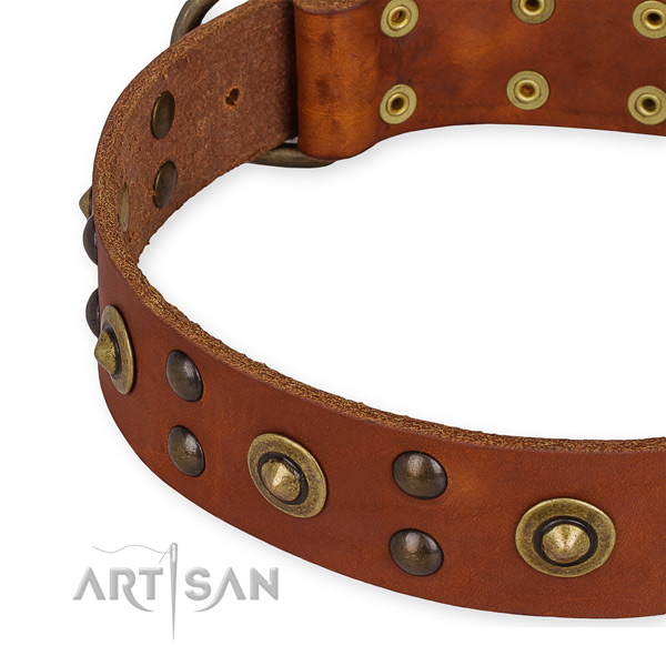 Full grain leather collar with strong traditional buckle for your lovely pet