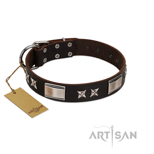 Exceptional dog collar of full grain natural leather