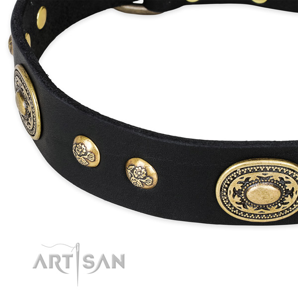 Studded genuine leather collar for your attractive doggie