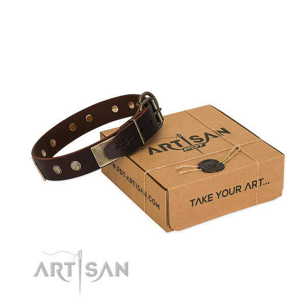 Reliable buckle on dog collar for easy wearing