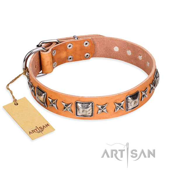 Comfortable wearing dog collar of high quality full grain leather with studs