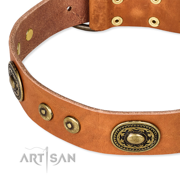 Full grain leather dog collar made of best quality material with decorations