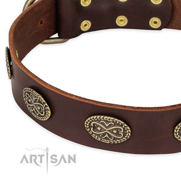Comfortable genuine leather collar for your handsome pet