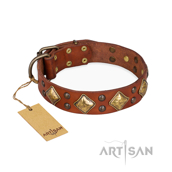 Easy wearing top quality dog collar with corrosion proof traditional buckle
