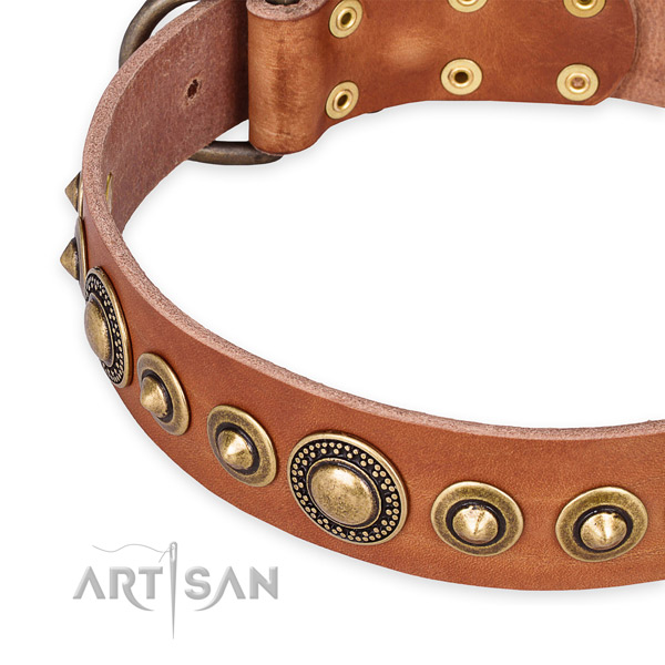Best quality full grain genuine leather dog collar created for your handsome canine