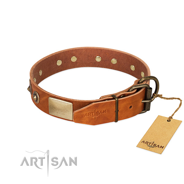 Corrosion proof decorations on stylish walking dog collar