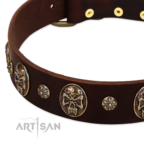 Durable embellishments on full grain genuine leather dog collar for your dog