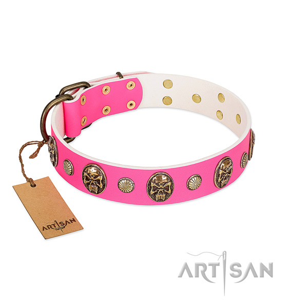Rust resistant adornments on genuine leather dog collar for your canine