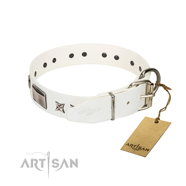 Exquisite collar of full grain leather for your lovely dog