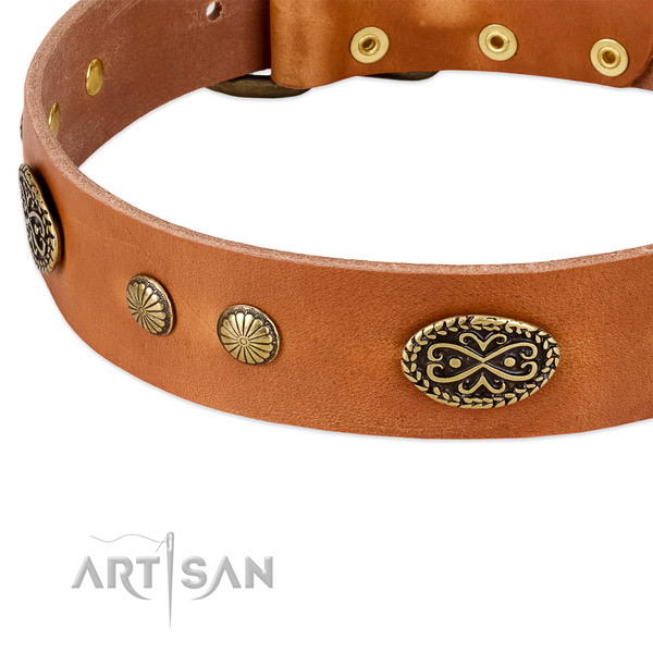 Rust-proof buckle on leather dog collar for your canine