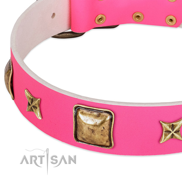 Full grain genuine leather dog collar with awesome embellishments