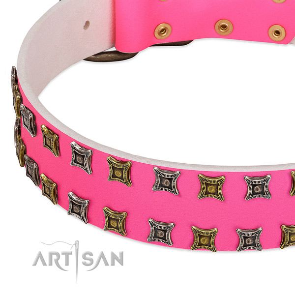 Full grain leather dog collar with decorations for your lovely four-legged friend