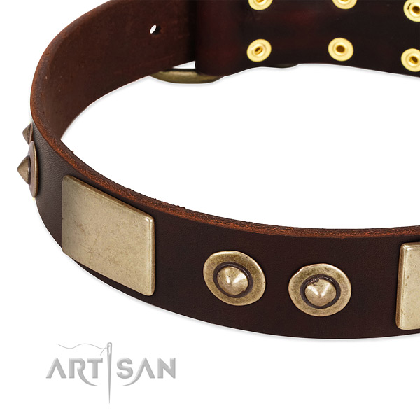 Corrosion proof D-ring on leather dog collar for your canine