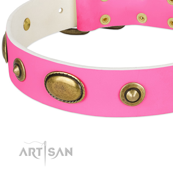 Strong embellishments on natural leather dog collar for your four-legged friend