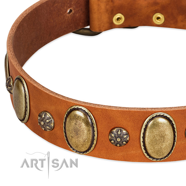 Easy wearing high quality full grain natural leather dog collar