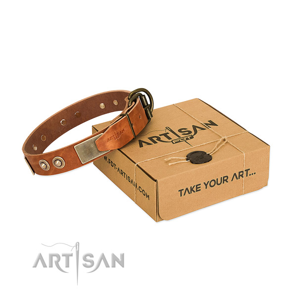 Rust-proof embellishments on dog collar for daily use