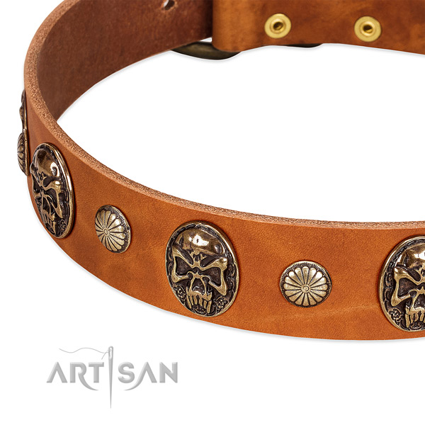 Corrosion resistant fittings on natural genuine leather dog collar for your doggie