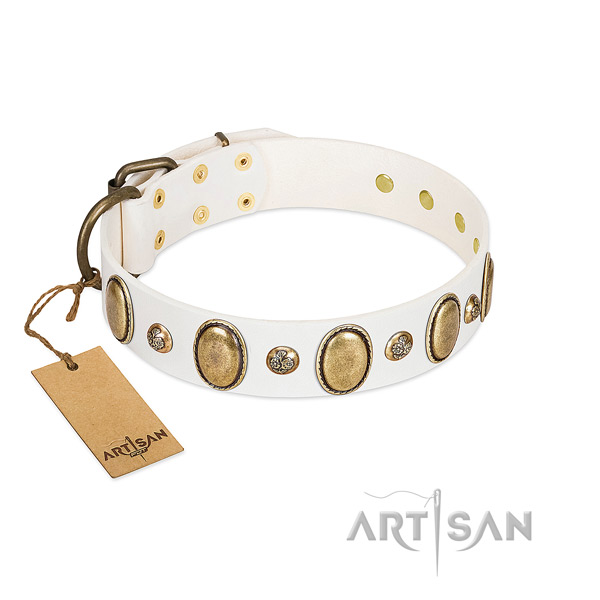 Natural leather dog collar of best quality material with unusual decorations