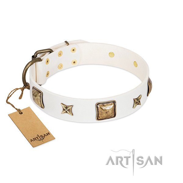 Studded full grain genuine leather collar for your four-legged friend
