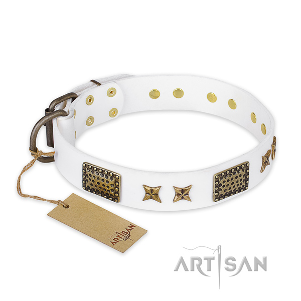 Adorned leather dog collar with strong buckle