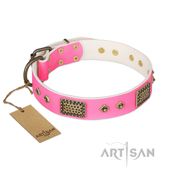 Adjustable full grain natural leather dog collar for walking your doggie
