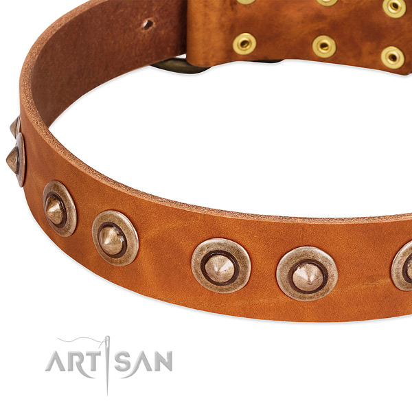 Rust-proof embellishments on full grain natural leather dog collar for your dog