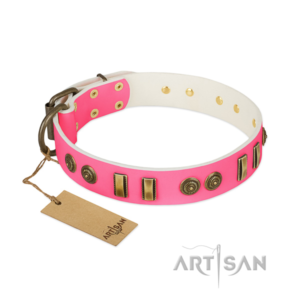 Top notch leather collar for your pet