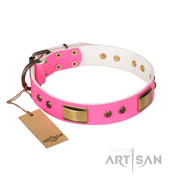 Amazing full grain natural leather collar for your canine
