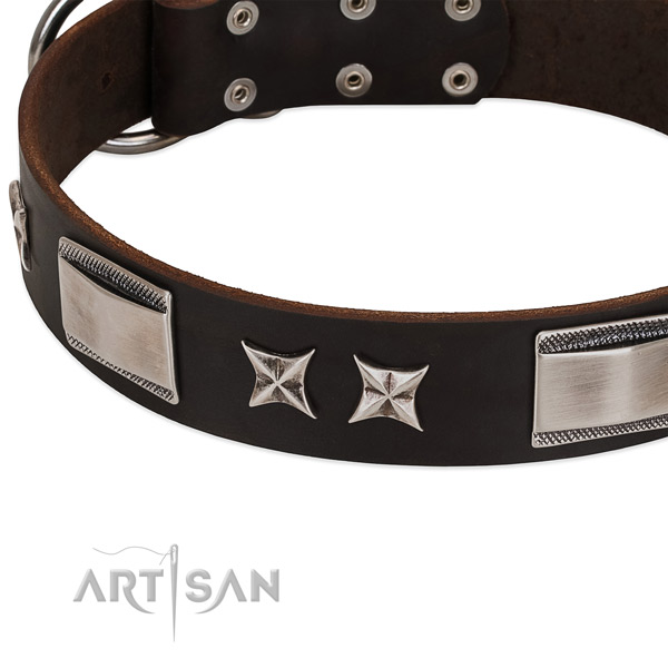Gentle to touch full grain genuine leather dog collar with durable traditional buckle