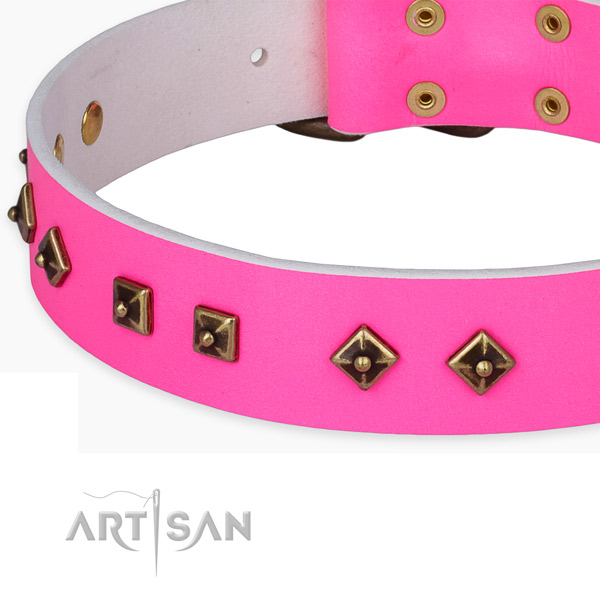 Top notch full grain genuine leather collar for your stylish doggie